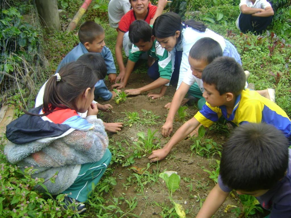 niños realizando actividades sociales