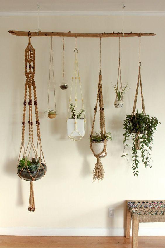 Plantas en macetas colgadas