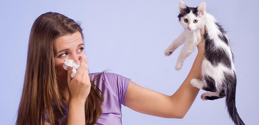Alergias a mascotas