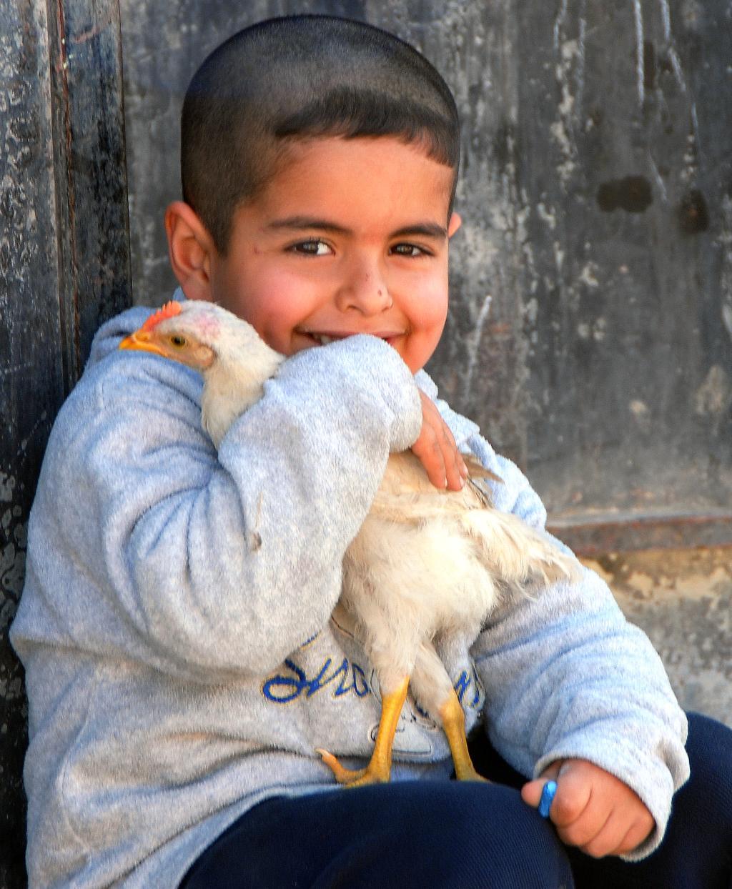 niño con pollo
